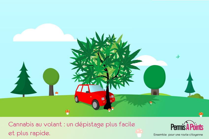 illustration voiture accidentée dans une arbre à feuilles de canabis