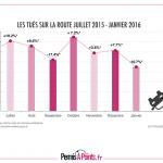 statistiques mensuelles de la sécurité routière